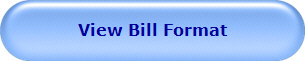 View New Bill Format